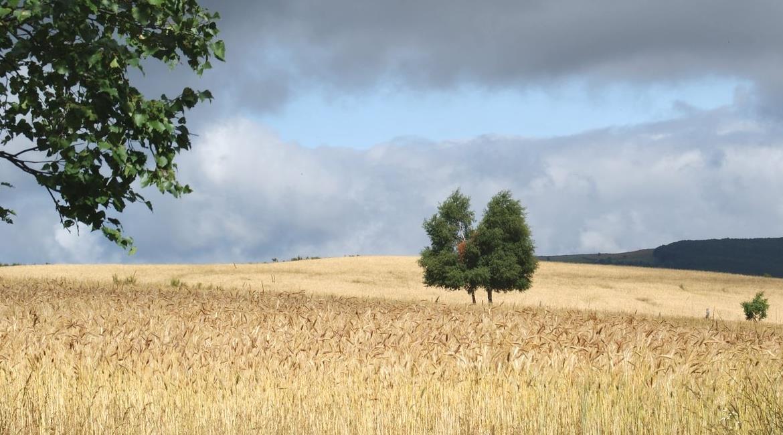 CONSEIL   : Anticiper les variations météo en randonnée